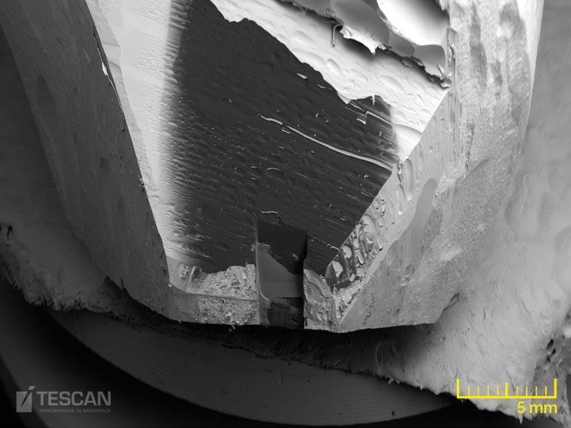 Large area FIB-SEM cross-section in a resin-embedded tooth