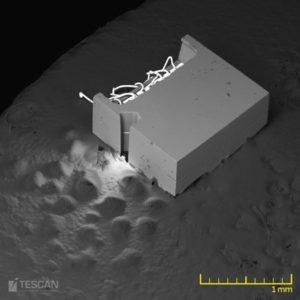 Blick auf eine MEMS Probe (WideField Modus)