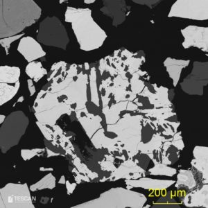 Tantalite grain complexly intergrown by muscovite