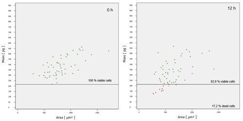 Cells with small area and dry mass below the determined mass limit (220 pg) are considered dead (red dots).