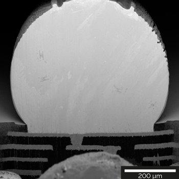 630 μm-diameter solder ball cross-sectioned using a Si mask for artefact-free surface.
