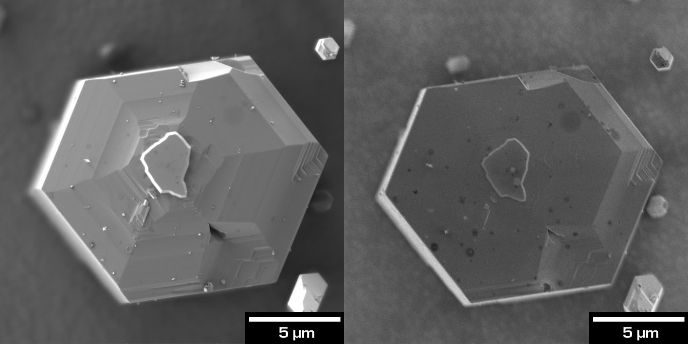 Plan-views of GaN nanowires with InGaN quantum wells. Different BSE contrast acquired at beam energy of 2 keV with (left) the E-T detector for topographic contrast and (right) the Multidetector with grid ON set at -1.9 kV which filters out most of the bulk BSE revealing surface features that are not visible to other detectors.