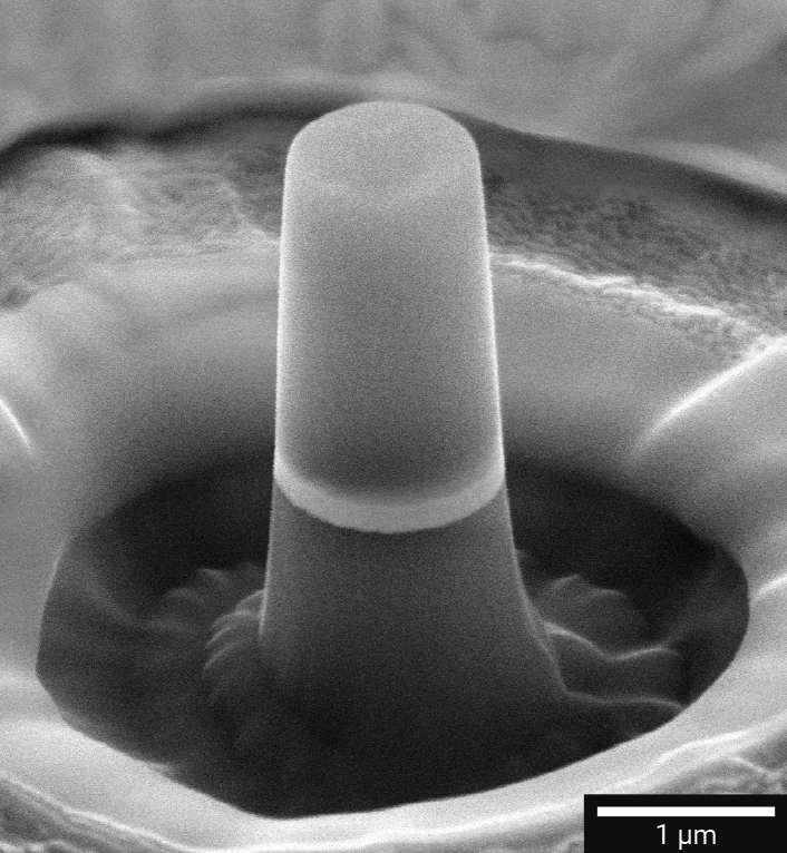 Micropillar for mechanical testing. Image taken from the TESCAN Materials Science brochure.