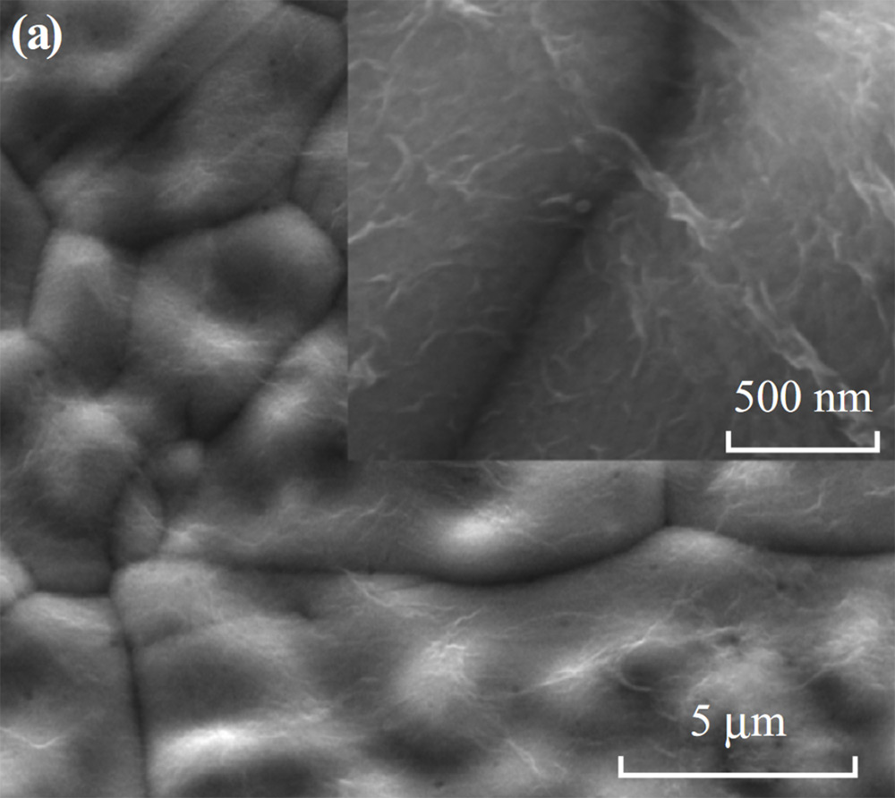Top-view SEM images of a rGO/NF.