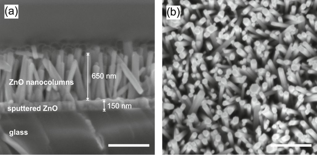 Cross-sectional (a) and top (b) view of densely packed ZnO NCs grown at 90 °C for 180 min (scale bar: 500 nm).