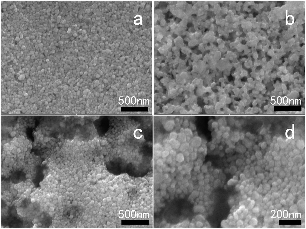 SEM images of the AgNHPs and GE–AgNHPs inks with different GE contents after sintering.